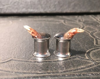 Grabby Hands REAL Preserved Mummified Mole Back Feet Paws CLAWS Specimen PAIR Resin Taxidermy Double Flare Steel Tunnel Gauge Plugs 8mm
