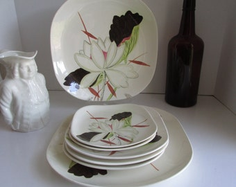Desert Plates Red Wing Pottery Plates Lotus Pattern