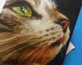 Tabby cat greetings card