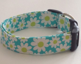 Blue White & Green Daisy Dog Collar