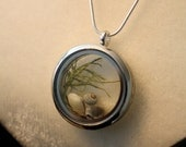River silver locket, botanical pendant, shell and moss necklace, terrarium necklace, forest necklace, glass and silver necklace