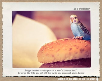 8x10 Budgie Burger • Humorous Print • Funny Diet Wall Art •  Budgie Print • Foodie Art • Pastry Lover Kitchen Decor • Gifts Under 20