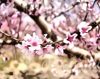 Peach Blossom Trees Digital Painting Print / Spring Flowers Georgia Pink Wall Art Branch