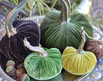 Woodland Mix Velvet Pumpkins and Acorns with Real Pumpkin Stems, Wedding Decor