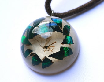 beetle wing and fly necklace