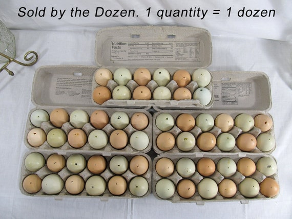 """1 dozen hollow eggs for craft project """"easter eggs"""" blue & green ranch eggs - happy chickens - chicken eggs """"blown out"""" eggs 12 eggs"""