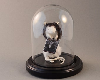 Taxidermy Goth Mouse with Black Glass Dome