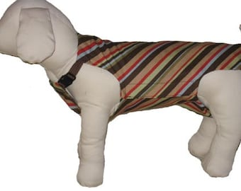 Male Dog Diapers- Stripe in XX-Small