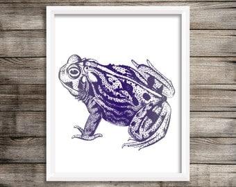 Navy Frog (#2)