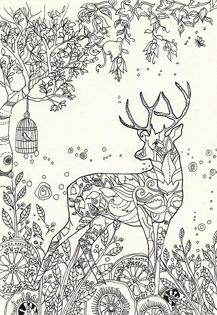 Magic deer printable adult coloring page to print and color for Deer coloring pages for adults