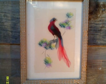 Vintage 1950's Mexican Feather Art Picture, Small Bird Picture, Mexican Folk Art, Feather Bird Picture, Feather Art Picture, Mexican Bird
