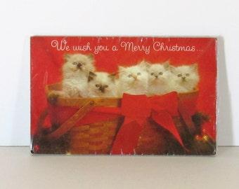 18 Vintage Christmas Kitten Postcards