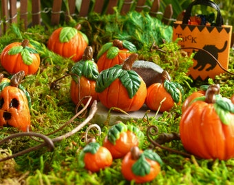 6 Miniature Halloween Pumpkins Fairy Garden Accessories