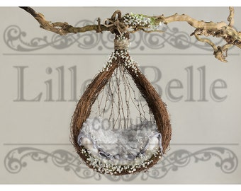 Digital prop/backdrop (Blue Curls Hanging Vine Basket)