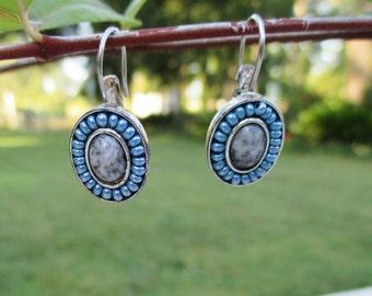 Blue and Gray Liz Claiborne Dangle Earrings