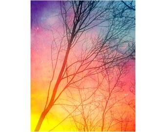 Fine Art Print, Sunset Art, Tree Photography, Colorful Wall Art, Nature Wall Art, Forest Decor, Winter Sunset Photography, Bare Tree