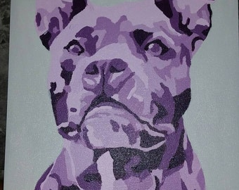 Purple Pit Bull
