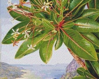 Flowers of a Bush and Pitcher Plant PDF Cross Stitch Pattern