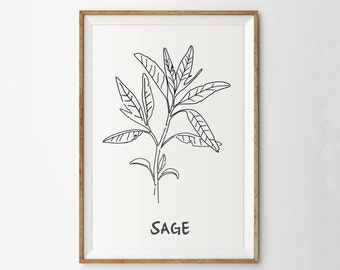 Sage print - Herb print - Kitchen print - Botanical print - Garden print - Spring art - Plant prints - Leaf prints - Printable Art