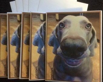 Smiling Weimaraner Note Cards