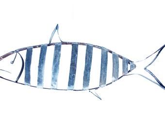 Barrel Hoop Striped Fish
