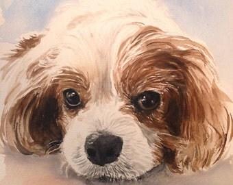 Custom pet portrait.Dog portrait.Pet portrait.Pet portrait comission.Dog lover.Dog art