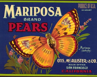 Very Rare Mariposa Pears Crate Label