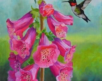 Pink Foxgloves and a Hummingbird