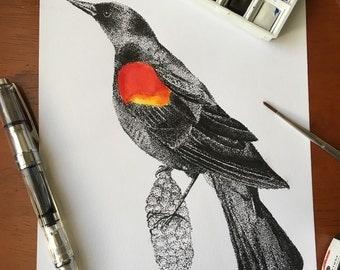 Original Red-Winged Black Bird Pointillism Illustration