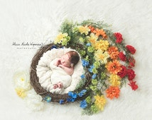 Rainbow Wreath Digital Newborn Photography Prop