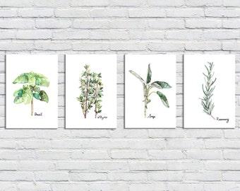 Herb Print Set of 4 - 5x7 Watercolor Prints, Herb Watercolors, Kitchen Decor, Green Herbs, Print Set, Herb Prints, Herb Painting, Herbs