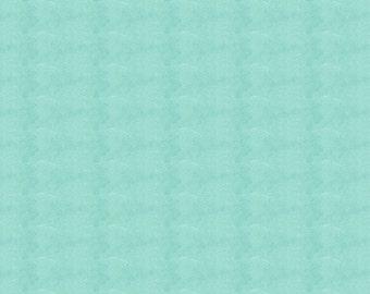 Solid Seafoam Aqua Minky Fabric - By The Yard - Girl / Boy / Gender Neutral