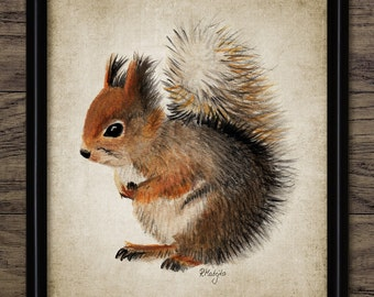 Red Squirrel Watercolor Print - Animal Painting - Woodland Home Decor - Forest Art - Printable Art - Single Print #1009 - INSTANT DOWNLOAD