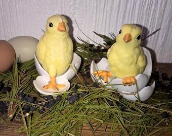 Baby Chicks in Eggs, Easter, Spring Decor - Set of 2