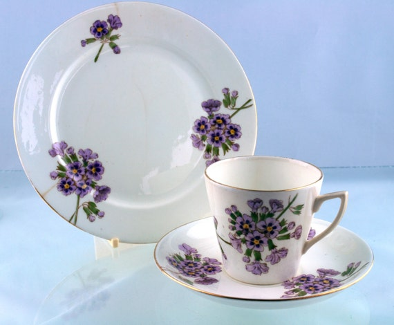 Pretty Vintage Primula Auricula 1950s Plate, Cup And Saucer Tea Set