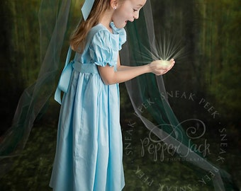 Boutique custom handmade pageant girls Neverland Wendy Darling Dress , Wendy Costume, Wendy Dress, Wendy outfit