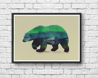 Art-Poster 50 x 70 cm - Polar Bear