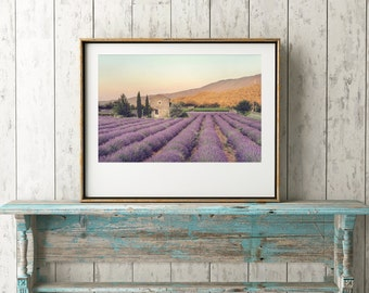 European Travel Photography, Provence, France, Lavender Field, Instant Download, Digital File, Printable Art, No.06