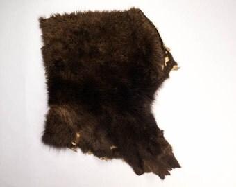 Buffalo Hide Piece : American Bison