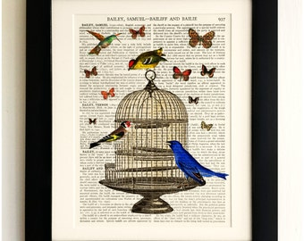 ART PRINT on old antique book page - Birds with Birdcage and Butterflies, Vintage Upcycled Wall Art Print, Encyclopaedia Dictionary Page