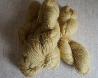 Icelandic pure wool, hand dyed with Rheum rhabarbarum 240915-41