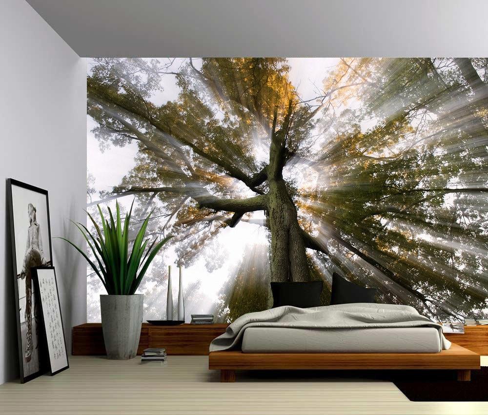 Soleil Arbre Rayons De Lumi Re Grande Murale Papier Peint
