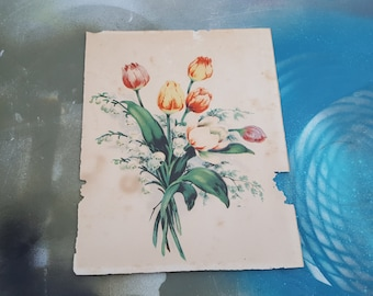 Very Old Print of Tulips / Vintage Print / 30s Print / Floral Print