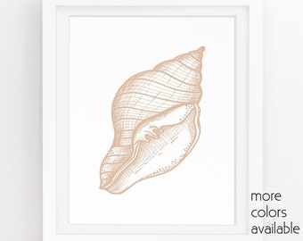 Shell art, Neutral wall art, Seashell decor, Beach bathroom, Coastal living, Ocean art print, diy wall art, Digital, 5x7, 8x10, 11x14  222c
