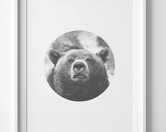Animal portrait print, Bear print, Downloadable print, wall art print wall art decor, bear printable, modern decor, home decor modern poster