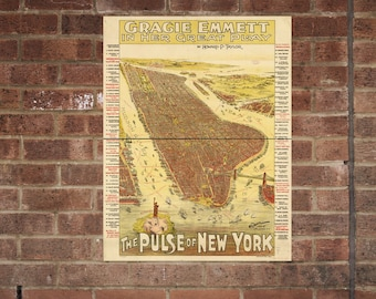 The Pulse of New York City  Vintage Print Poster Map in 1891