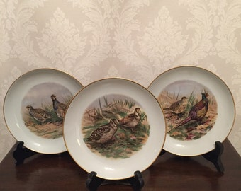 """Sport Bird Plates By Naaman Israel - """"Wild Game Birds of the World"""" Plates Series - Set of 3"""