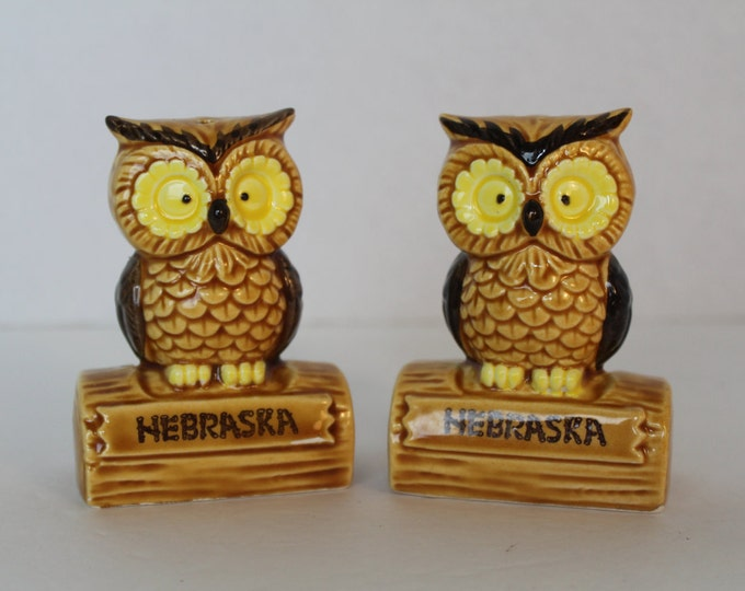 Vintage Owl Salt and Pepper Shakers, Nebraska Souvenir, Kitchen Collectible
