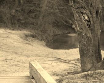 Creek Life 1 (Creek Life Series)