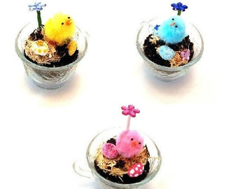 Easter Tea Cup Fairy Garden / Desktop Terrarium / Miniature Zen Garden in Vintage style Tea Cup / Select your Chick color